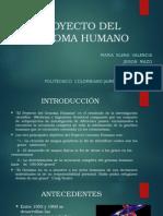 Proyecto Genoma Humano Definitivo