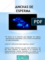 Manchas de Esperma