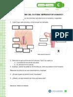 Articles-26564 Recurso PDF