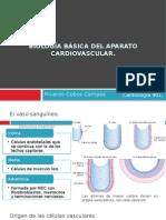 1.Biología Básica Del Aparato Cardiovascular