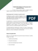 Plan de La Unidad Metodológica de Programación Y Control de Obras
