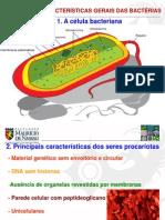 Caracteristicas Gerais Das Bacterias