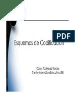 P.P. N° 00 Proceso de Codificación