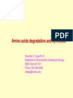 Amino Acids overview
