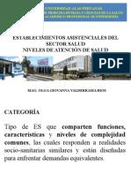 Establecimientos Asistenciales Del Sector Salud Perú