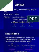 amina_1_2010