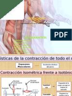 Hiperplasia de Las Fibras Musculares