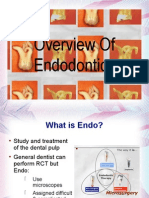 Endo Overview