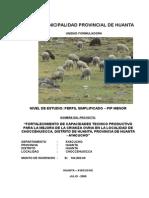 Perfil de Proyecto Ovinos Choccehuiscca