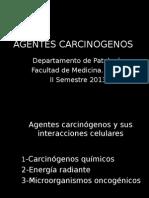 Agentes carcinogenos, manifestaciones clinicas, defensas, diagnostico. (1).ppt