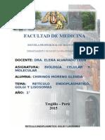 INFORME-RE-GOLGI.docx