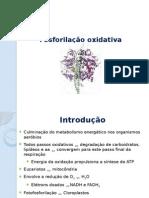 7_fosforilacao.oxidativa