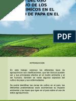 Exposición Impacto de Agroquimicos en El Cultivo de La Papa Final 1.