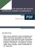 Clasificacion de Nervios Perifericos Seddon & Sutherland