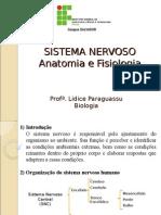 Sistema Nervoso Anatomia Fisiologia