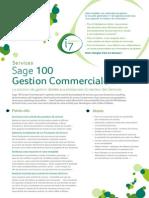 Sage 100 Gestion Commerciale i7 Services