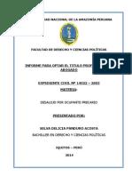 Informe Civil