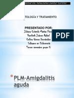 PLM Amigdalitis Aguda
