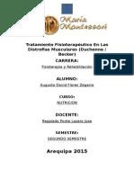 Monografia Fisiopatologia Augusto