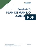 Capitulo 7 Plan de Manejo Ambiental Sitio 1 2