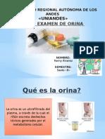 Examen de Orina- Semio II