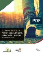Estudio Del Tercer Sector de Acción Social en España 2015
