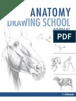 Anatomy Drawing School Animal
