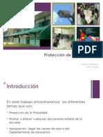 proyecto felicita