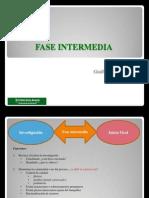 Fase Intermedia Aspectos Generales