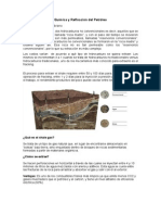 shale oil y el shale gas.docx