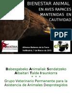 alf aves rapaces AMVAC 2015.ppt