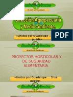Rendición de cuentas Dirección Agropecuaria y Medio Ambiente