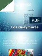 Polímeros procesos