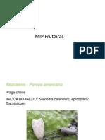 Aula 14 MIP Fruteiras