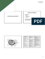 Anatomia Das Celulas 3