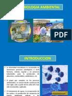 Clase I. Microbiología Ambiental 2015