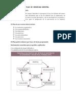Estructura de Un Plan de Seguridad Muestra
