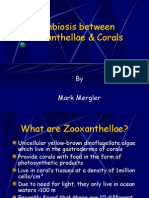 Symbiosis Between Zooxanthellae & Corals (1)