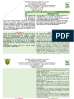 cuadro comparativo de etapas de desarrollo del lenguaje  pyl