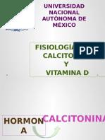 fisiologia calcitonina y vitamina D