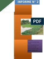 fitorremediacion con jacinto de agua