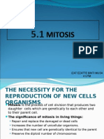5.1 mitosis
