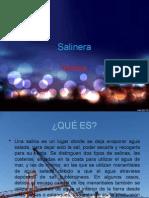Salinera