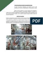 Rotacion de Puesto - Prevencion de Lesiones Musculo Esquletica Despostada