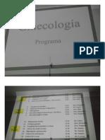 Programa de Ginecologia.pdf