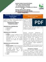 CUADRO COMPARATIVO Desarrollo y Madurez del Aparato Fonoarticulador. (0-7 años )Desarrollo y Madurez de la Audición y Percepción del habla. (0-7 años)