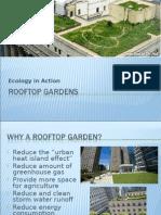 Cub Rooftop Lesson01 Presentation v5 Tedl Dwc