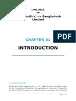 TERM PAPER GlaxoSmithKline Bangladesh Limited.docx