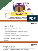 Capacitacion Tecnica Funcionamiento Del Congreso Joven- Angelica Rodriguez
