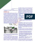 movimiento parabólico peru.pdf